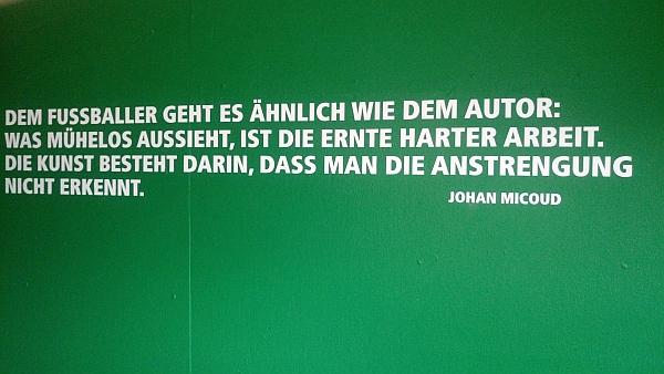 Spruch Johan Micoud im Weserstadion