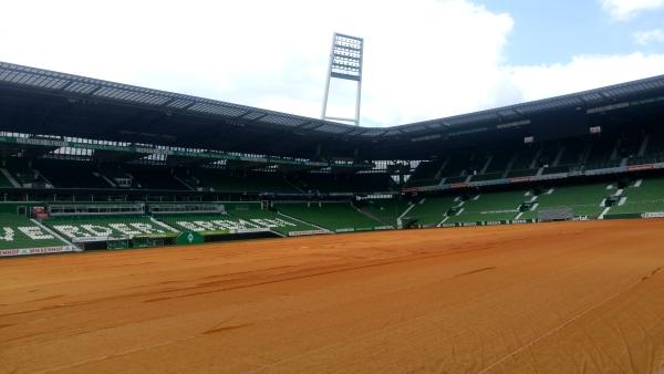 Blick vom Spielfeldrand im Weserstadion
